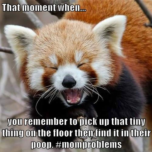 That moment when you pick up that thing on the floor then find it in their poop. #momproblems #humor #motherhood