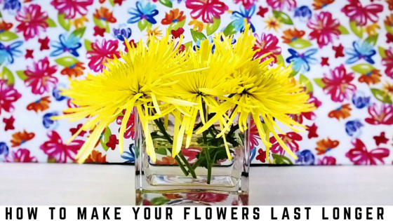 How to make your flowers last and live longer. #tips